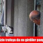 istanbul-teknik-servis-kedi-caps2